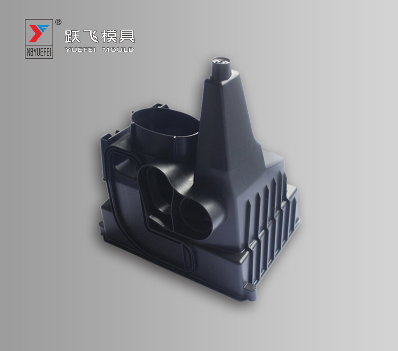 Air Filters Mould