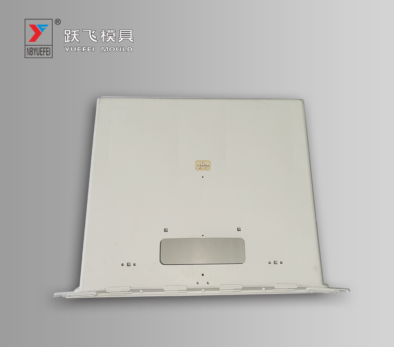 Body samples Mould